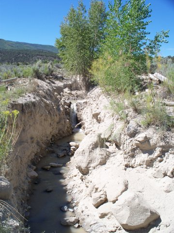 Porcupine Creek before Encana arrived