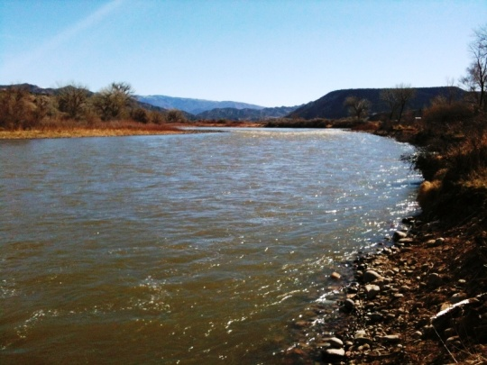 One of my favorite places on the Colorado, looking east from Dogland -- aka River Park, south of Silt. I love this river ...