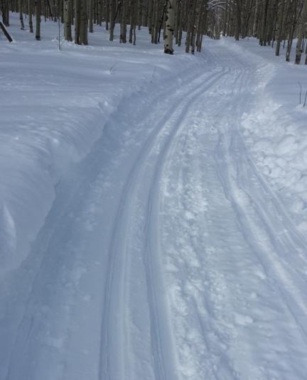 West Elk ski track 02-01-14