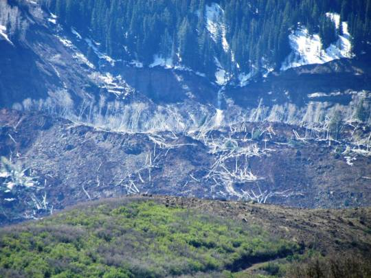 Visual of debris field including downed trees, boulders, and massive amount of displaced mountain side. [Photo/Caption Credit: Mesa County Sheriff's Office]