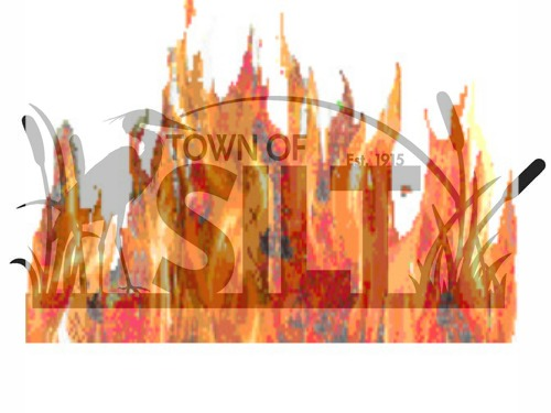 Silt flaming cattail logo