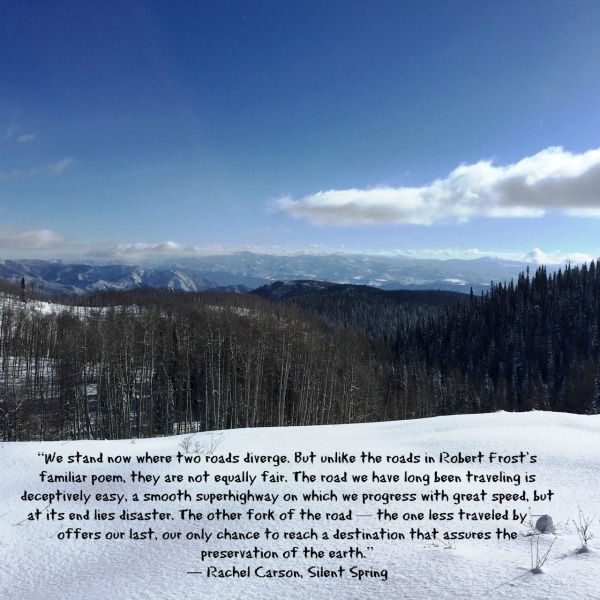 West Elk Dorothys view quotation